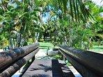 Glitter Bay 202 - Luscious Gardens