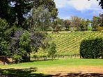 Vue De Vin Gardens