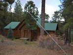 Building,Cottage,Forest,Vegetation,Countryside