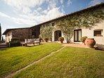 Beautiful relaxing fields of grass outside the villa