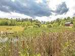Looking over 1 Acre Pond, Fields, Carriage House, Home and hundreds of Beautiful Birch Trees