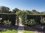 Peek through the arbor of roses to enter your own 'secret garden'.