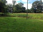 Garden and Field