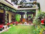 As you enter the house, this lush interior garden greets you.
