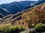 Valle del Silencio desde Montes de Valdueza