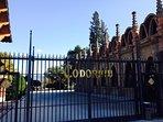 Codorniu Cava tour around 50 minutes north of the property