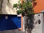 Fruit tree by the entrance to Casa Nido del Cuervo.