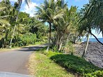 Beautiful Kalapana Kapoho Bch Rd near Kehena Beach
