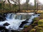 River in Killarney National Park