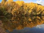 Nearby Loch Achility in autumn