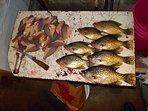 Deep clear lake guarantees best tasting fish anywhere!