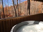 Hot tub with wonderful views!