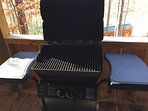 Gas grill for your steak or big catch!