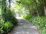The path at the rear of Isygraig