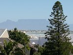 Views of Table Mountain from loft room