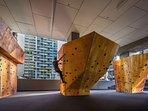 A rock climbing facility.