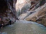 The river walk starts where the pavement ends in Zion. Prepare to get wet