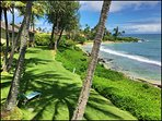 Attend a luau, go snorkeling, scuba diving and more!