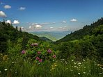 The Views are like none other, there are 150 Smoky Mountain trails covering 800 miles of pristine back-country.