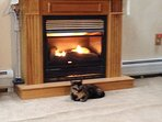 Propane fireplace for chilly nights (cat not included)