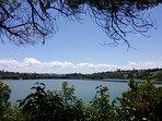Views of Orakei Basin