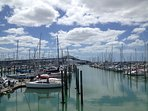 Westhaven Marina with Auckland Harbour Bridge in the distance