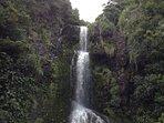 Waterfalls in the Waitakeres