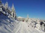 Het Reuzengebergte is ook zeer geschikt voor een wintersport vakantie