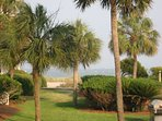 Enjoy the beach and the magnificent Palmetto Trees in abundance.