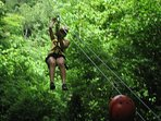 Zip Lines are fun nearby.
