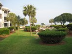 Port O Call has courtyard full of beautiful Palmettos and pool just for our condo complex