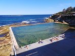 Heritage listed 50m Wylies pool is moments away, and like swimming in an aquariu