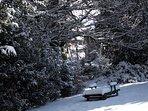 Garten im Winterkleid
