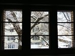 winterlicher Blick aus dem Fenster