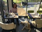 Tracey and Holly the elderly Golden Retriever at one of the many local restaurants that welcome dogs