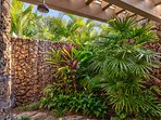 Lush tropical outdoor shower garden.