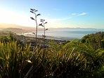 Enjoy expansive views across Pohara and Golden Bay
