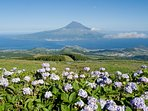 Local attractions - Pico Island viewed from Faial