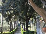 tree-lined automatic  entrance, that reaches the Villa ....princely !