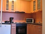 Well equipped modern kitchen, electric hob and oven, small fridge, microwave, toaster