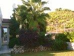 Property has mature landscape gardens.