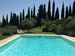 pool with views of cypress and olive trees