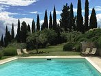 the pool with cypress and olive trees background