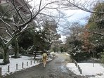 Momoyama Castle, can be reached by walk from the guest house(30 minutes), marvelous architecture~