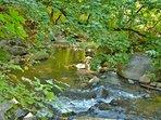 Enjoy the sounds of Deer Creek
