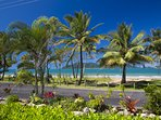 Apollo Jewel 1- View to Beach and Dunk Island