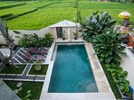 Let yourself surrounded by the green of rice field