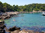 Do not miss to explore Lokrum island while being in Dubrovnik!
