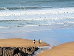 Marine View Woolacombe Holiday Cottages Barricane Beach