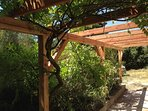 Handmade wooden pergola providing shade
